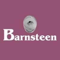 Barnsteen Zilveren Sieraden
