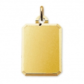 40.06617 gouden fotomunt rechthoek 15x20mm