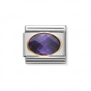 030601001 zirconia paars ovaal Nomination schakel staal met goud