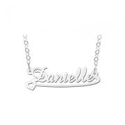 ZNK35 zilveren naamcollier Danielle