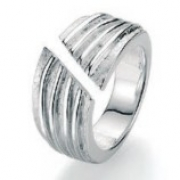 19-68 bijzonder model zilveren damesring