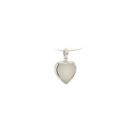 1260 hart midden ashanger goud of zilver